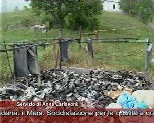 Vandalismo sul Farno, incendiati i cassonetti