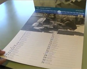 Un calendario dedicato ai vecchi