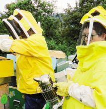 Con gli apicoltori bergamaschi collaborano i ragazzi del Gruppo Ge.Di.